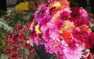 photo tour of flower market in Delhi